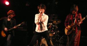 2012moderndollz