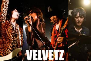Velvetz1111